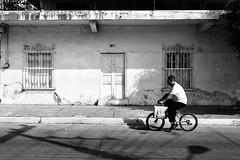 Bicicleta en Libertad. (Marcos Núñez Núñez) Tags: tuxtepec oaxaca mexico canoneos80d canon blancoynegro bw blackandwhite noir bicicleta calle streetphotography