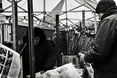 Flower Seller (Bury Gardener) Tags: monochrome mono burystedmunds bw blackandwhite britain suffolk streetphotography street streetcandids snaps strangers candid candids people peoplewatching folks nikond7200 nikon england eastanglia uk 2019 cornhill
