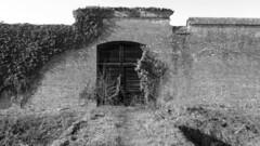 east door - outside chartreuse of pavia (d a r i u s) Tags: certosa pavia