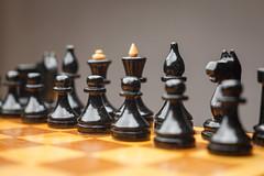 IMG_1663 (foto.fotomaster3) Tags: fine натюрморт студия шахматы
