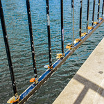 Love Locks by the Water thumbnail