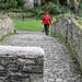 A WALK ALONG THE RIVER DODDER [ CLONSKEAGH TO MILLTOWN ]-146725