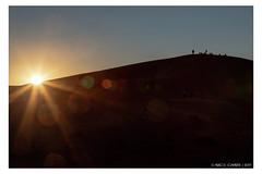 Staring at the sun (Mirko Daniele Comparetti) Tags: ma marocco morocco sahara azzurro blue cielo desert deserto marrakechexpress2019 people persone sabbia sand silhouette sky sunset tramonto