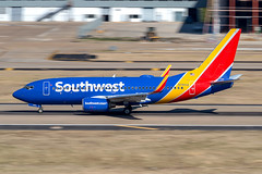 Southwest Airlines Boeing 737-752(WL) (zfwaviation) Tags: kdal dal dallaslovefield airport airplane plane aircraft airliner texas n7843a b737 737700 wn swa pan panning 160