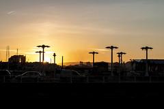 ¿Atardecer sobre el bosque? (David A.L.) Tags: asturias asturies gijón atardecer puestadesol sol solponiente cielo fomento ocean