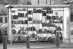 Reading station in the Railway Park B&W (zeevveez) Tags: זאבברקן zeevveez zeevbarkan canon bw book jerusalem