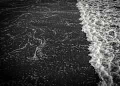 Little Wave No 2 (CDay DaytimeStudios w /1 Million views) Tags: beach blackwhite ca california cayucos coastline highway1 ocean pacificcoast pacificcoasthighway pacificocean water wave