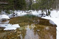 IMG_9263 (ckhaley) Tags: franconia frozenwaterfalls icefalls waterfall waterfalls newhampshire winterhiking winter snow snowfalls ice snowing snowshoing snowshoe