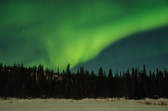 March Madness-191 (juan_guthrie) Tags: yellowknife nwt northernlights