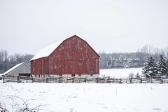 Winter on the Farm (CalTek Design) Tags: barn winter farm farming structure outdoors landscape landscapephotography red snow ontario rural country