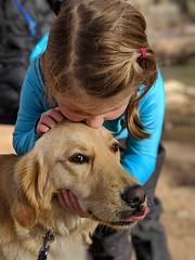 00100lPORTRAIT_00100_BURST20181228151018861_COVER (KevinXHan) Tags: zions national park dog golden retriever cute aww parus trail hike walk nature outdoors google pixel3 photoblog photodiary