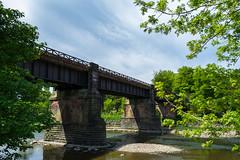 Bridge over the river Ribble ,seen within Avenham Park , Preston , Lancashire - May 2018 (I.T.P.) Tags: bridge avenham park preston lancashire landscape