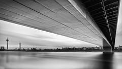 Reflected Skyline (frank_w_aus_l) Tags: duesseldorf monochrome nikon 1635 nikkor d800 oberkasselerbrücke bridge skyline bw sw noiretblanc rhein river water sky architecture germany wide reflection shadow düsseldorf nordrheinwestfalen deutschland de