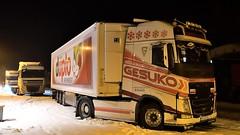 D - M. Reinhard >Gesuko duplo< Volvo FH GL04 (BonsaiTruck) Tags: reinhard gesuko duplo volvo nacht night nuit lkw lastwagen lastzug truck trucks lorry lorries camion caminhoes