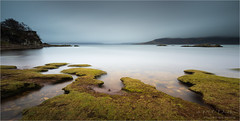 Where Land Meets The Sea (Phil Durkin CPAGB BPE3) Tags: scotland uk winter landscape outdoors grass water shoreline le leefilters benro