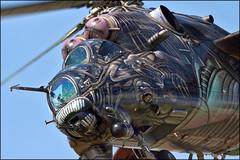 Mil Mi-24V Alien Tiger (Pavel Vanka) Tags: mil alien tiger alientiger military mi24v mi24 mi35 gunship hind aviationfair pardubice pilot art tigercamo tigermeet amazing czechairforce