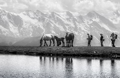 _DSC2008 (erfey07) Tags: mountain caucasus svaneti georgia landscape bw lake snow peaks clouds people horses reflections
