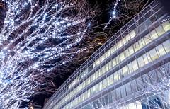 Looking up to Roppongi (sapphire_rouge) Tags: 東京 夜景 六本木 tokyomidtown 東京ミッドタウン roppongi japan tokyo nightview 欅坂 keyakizaka