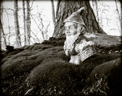 DSCN3518 (DianeBerky19) Tags: nikon coolpixp1000 winter gnome bw