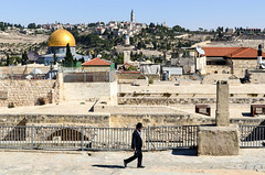 On the rooftops of Jerusalem (jbdodane) Tags: alamy alamy181101 israel jerusalem jewishquarter middleeast oldcity orthodox rooftop templemount