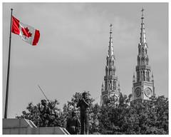 Ottawa, Canada (nickyt739) Tags: city cityscape black white bw noir monochrome canada north america flag maple leaf some colour red architecture soldier patriotic nikon dslr d5100 amateur