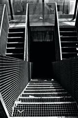 untitled (lyvan.techec) Tags: escalier noiretblanc baw blackandwhite