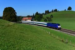 223 001-9, BRLL - Beacon Rail Leasing Ltd., Heimhofen (4619) (CNL 482) Tags: eurorunner er23 223011 223001 brll beacon rail leasing ltd heimhofen allgäu bauernhof green blue sky tree train nikon d750 diesel kbs970 nahverkehrszug bayern