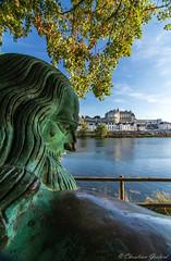 1519 (christian.grelard) Tags: amboise loirevalley loire history histoire leonardodavinci leonarddevinci tourism touraine statue photographie
