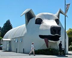 Tirau, North Island, New Zealand (susiefleckney) Tags: tirau northisland newzealand giantdog corrugatediron corrugatedcapitaloftheworld