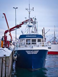 Descarregant la pesca / Unloading the boat