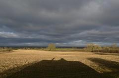 Morning 020319_DSC3238 (Leslie Platt) Tags: redhillcottages cheshirewestchester tarporley straightened exposureadjusted
