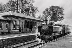 B&W (alanrharris53) Tags: steam engine train rail railways gwr pannier tank 6430 battlefieldline shackerstone