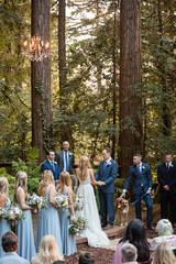 Congratulations to Sarah & Joel! Married September 29, 2018 (cindyp127) Tags: diy backyard california oliviasmartt outdoors photojournalism photojournalistic redwoods southbay vwbug wedding weddingphotographer woodside
