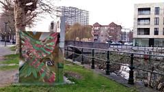 Cee Pil / Prinsenhof - 21 feb 2019 (Ferdinand 'Ferre' Feys) Tags: gent ghent gand belgium belgique belgië streetart artdelarue graffitiart graffiti graff urbanart urbanarte arteurbano ferdinandfeys ceepil