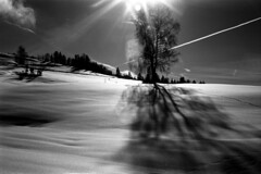 Acros the Snow (Film) (Harald Philipp) Tags: sun flare lensflare kodakretina retinaiiic snow fields sky fujiacros schneiderkreuznach primelens rangefinder film analog haraldphilipp foldingcamera shadow mountain switzerland zug morgartenburg aegerital aegeri oberaegeri morgarten contrail bw monochrome blackandwhite schwarzweiss schnee baum sonne berg cloud nature 35mm 135 hill forest landscape snowy farmland