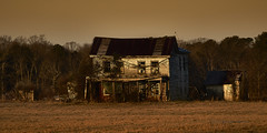 Warming in the Sunshine (Valley Imagery) Tags: somd ruin house medleys neck rd abandoned farmhouse old landscape dawn cold morning decay rural sony a99ii 70400gii