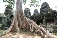 Angkor_Banteay Kdei_2014_01