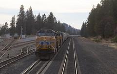 Colfax, California (imartin92) Tags: colfax california unionpacific railroad railway freight train emd sd70ace ge generalelectric ac4400cw locomotive