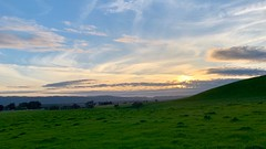 Tri-Valley Sunset (tourtrophy) Tags: trivalley livermore sunset i580 iphonexsmax iphonephotography