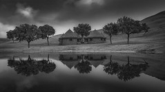 Symmetry .. (tchakladerphotography) Tags: bw morning atmosphere rajasthan india travel trees reflection water sky clouds sand dunes huts blackwhite naturallight