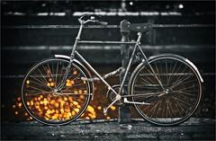 REFLECTION (bert • bakker) Tags: water fiets bike amsterdam lamplicht lamplight reflectie reflection bokeh nikon85mm18g night nacht dark donker elitegalleryaoi bestcapturesaoi