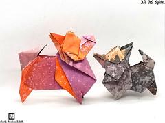 A4 A5 Spitz - Barth Dunkan. (Magic Fingaz) Tags: anjing barthdunkan chien origamispitz dog ecorigami hond hund köpek origami origamidog paperfolding perro pies spitz 犬 狗
