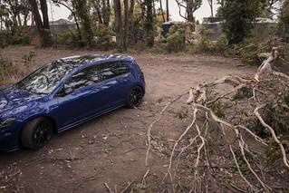 If a tree falls…
