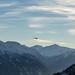 Hubschrauber über dem Vinschgau | Südtirol