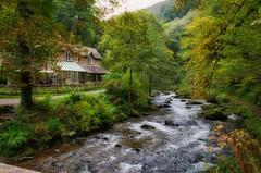 Watersmeet (C.G.Photos) Tags: watersmeet devon exmoor vacation river water landscape rural england luminar3
