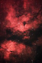 IC 1318 - Butterfly Nebula (AstroBackyard) Tags: sadr region cygnus ic 1318 hydrogen alpha zwo asi294mc pro astronomy camera