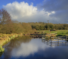 River Test reflection (Rich3012) Tags: test valley stockbridge river hampshire hants england uk reflection vertorama