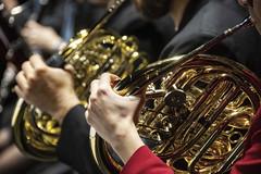 Trompa (Guillermo Relaño) Tags: maxbruch camerata musicalis teatro nuevoapolo madrid guillermorelaño nikon d90 concierto número1 n1 violín violin especial ¿porquéesespecial orquesta orchestra viento trompa