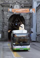 Bunte Buswelt - Salzburg (apfelpudding) Tags: salzburg österreich nahverkehr publictransport urbanmobility öpnv bus autobus omnibus linienbus albus albussalzburg man manlionscity lionscity cng