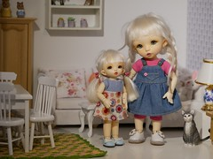 Thumbelina and Signe, my two Ante sisters. (steen76) Tags: tinybjd fairyland ante pukifee pukipuki